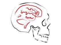 Абстрактный мозг Стоковые Фото