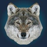 Абстрактный низкий поли дизайн волка Стоковые Изображения