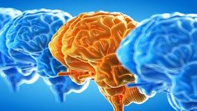 Абстрактный оранжевый мозг бесплатная иллюстрация
