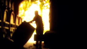 Абстрактный отснятый видеоматериал предпосылки бочонка winemaker свертывая видеоматериал