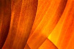 абстрактный помеец предпосылки Стоковое Фото