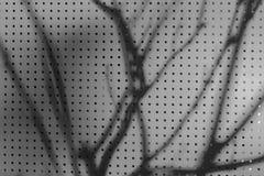 абстрактный помеец предпосылки Стоковые Фотографии RF