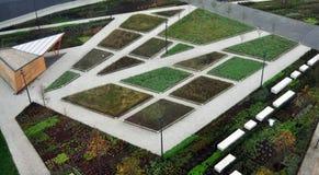 Абстрактный сад Стоковое Фото
