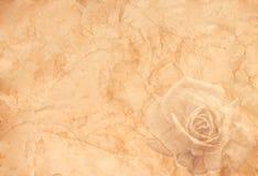 абстрактный сбор винограда вектора иллюстрации предпосылки Стоковые Фотографии RF