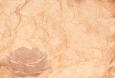 абстрактный сбор винограда вектора иллюстрации предпосылки Стоковые Фото