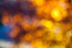 Абстрактный свет через листья дерева на заходе солнца Стоковое Изображение RF