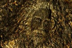 абстрактный силуэт стоковое изображение