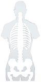 абстрактный скелет Стоковое фото RF