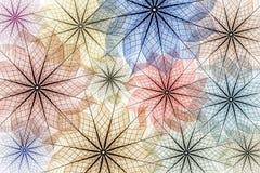 абстрактный скелет листьев предпосылки иллюстрация штока