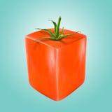 абстрактный томат красного квадрата Стоковое Изображение RF