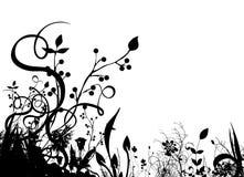 абстрактный флористический вектор Стоковое Фото