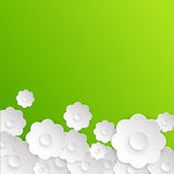 Абстрактный цветок белой бумаги гиацинты зеленого цвета карточки предпосылки выходят лилиям долина весны Стоковая Фотография RF