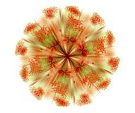 абстрактный цветок конструкции предпосылки Стоковые Фотографии RF
