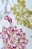 Абстрактный чертеж на холсте Стоковые Фото