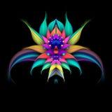 Абстрактный экзотический цветок на черной предпосылке Стоковая Фотография