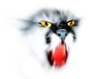 абстрактный lynx Стоковая Фотография RF