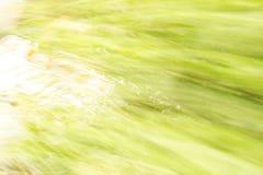 Абстракция в зеленом цвете Стоковые Изображения