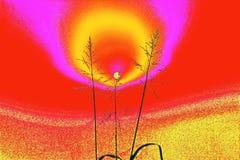 абстракция Солнечный ветер Стоковые Изображения RF