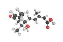Абсцизовая кислота (ABA), также известная как Dormin, самое лучшее известное как завод Стоковая Фотография