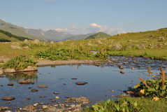 Абхазия зима кавказских гор альпиниста утомленная Стоковая Фотография RF