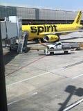 Авиакомпании духа стоковые изображения rf