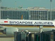 авиакомпании singapore Стоковое Изображение RF