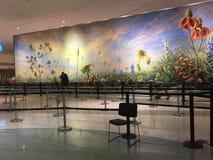 Авиапорт поля влюбленности Далласа юго-западный проверяет внутри зону Стоковая Фотография