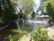 Авиньон - пруд в des Doms Rocher Стоковые Изображения RF
