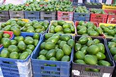 Авокадоы в рынке стоковые фотографии rf