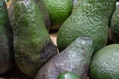 авокадоы стоковые фото