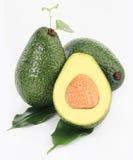 авокадо Стоковые Фото