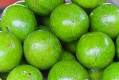 Авокадо. Стоковые Изображения RF