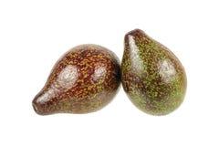 2 авокадоа изолированного на белизне Стоковое Изображение