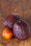 2 авокадоа сезона Стоковое фото RF