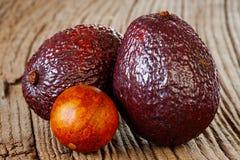 2 авокадоа сезона Стоковые Фото