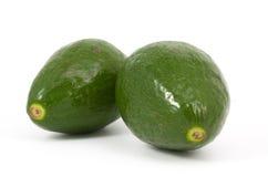 авокадоы изолировали зрелые 2 Стоковое Фото