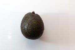авокадо одиночный Стоковое фото RF