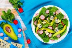 Авокадо, сыр горгонзоли, шпинат, салат редиски Стоковые Фотографии RF