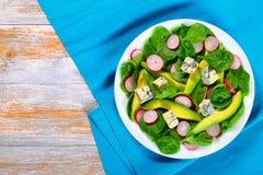 Авокадо, сыр голубой прессформы, шпинат, салат редиски Стоковые Изображения RF