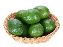 Авокадо Стоковые Изображения RF