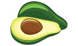 Авокадо иллюстрация вектора