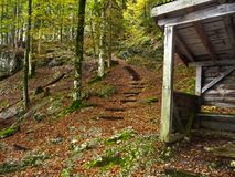 Австралии alpines Деревянный дом для отдыхать в осени леса горы Желтые деревья стоковые изображения rf
