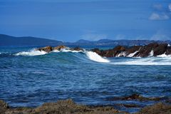 Австралийская береговая линия Forster стоковые фотографии rf