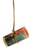 австралийский качая доллар Стоковые Изображения RF