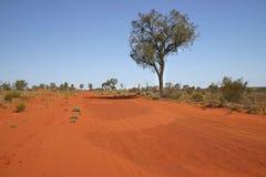 австралийский красный цвет ландшафта Стоковое фото RF