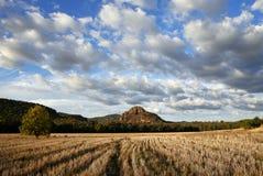 австралийский ландшафт Стоковые Изображения