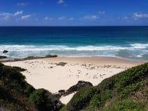 Австралийский пляж Burgess береговой линии стоковые фото