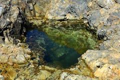 Австралийский прибрежный бассейн утеса стоковые изображения