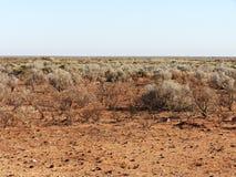 австралийское захолустье Стоковая Фотография