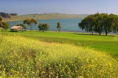 Австралия bullen merri victoria озера Стоковая Фотография
